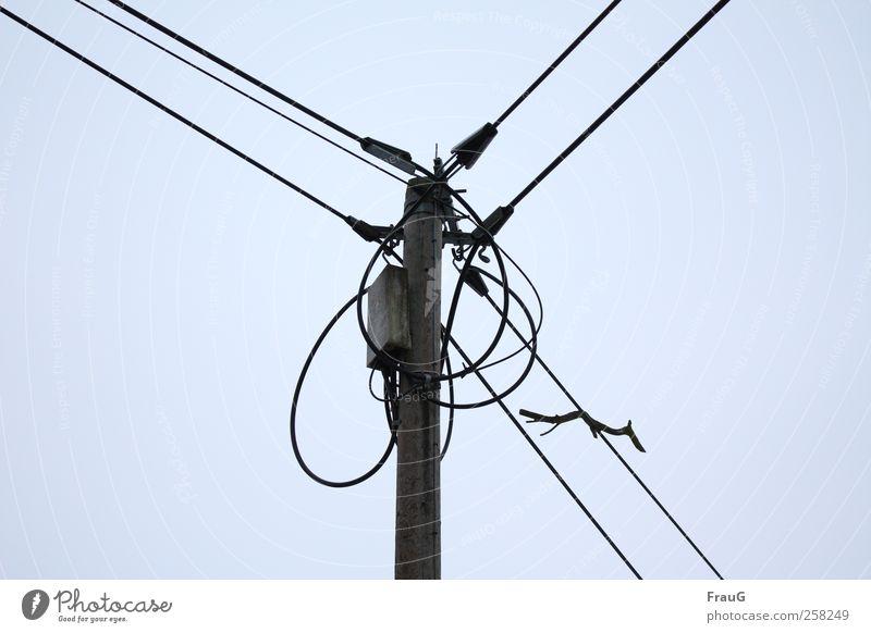 Verkabelt und aufgefangen Strommast Energiewirtschaft Himmel Kontakt Elektrizität Leitung Farbfoto Außenaufnahme Menschenleer Tag Blick nach oben