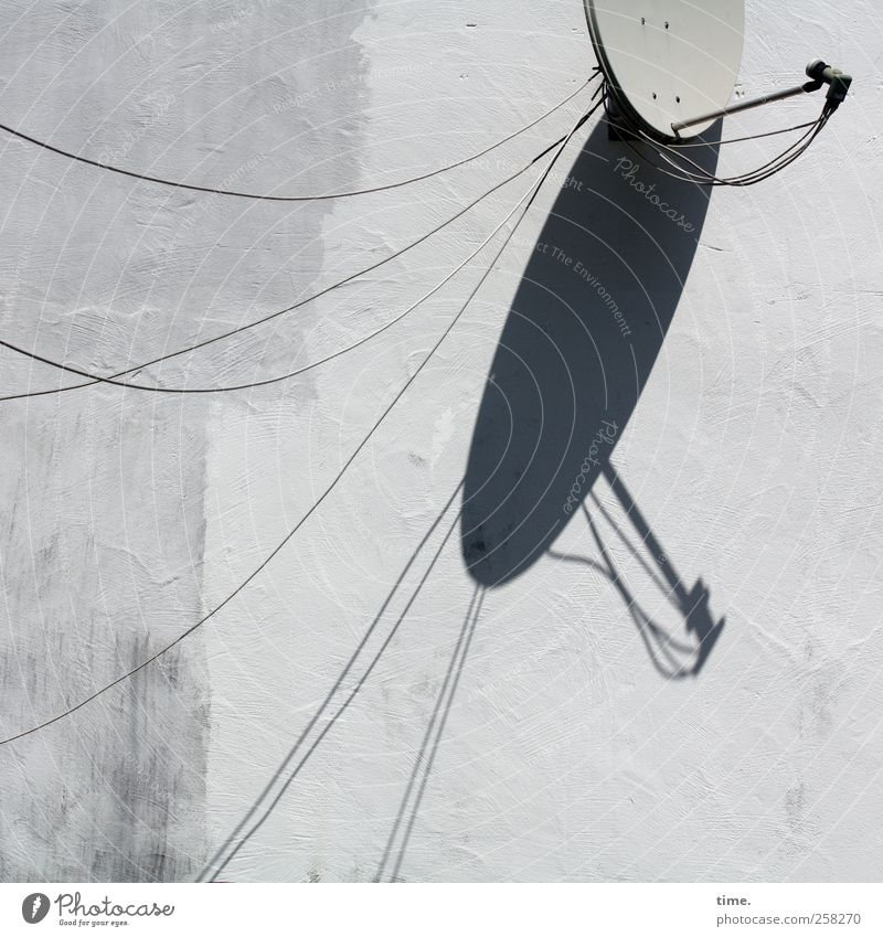 Schüsselfunk Kabel Satellitenantenne Technik & Technologie Unterhaltungselektronik Mauer Wand Stein Metall Netzwerk grau weiß Handel Kommunizieren Ordnung