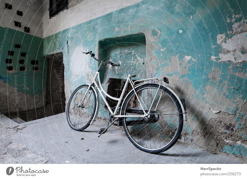 Drahtesel im Stall alt weiß Wand Mauer Fahrrad warten ästhetisch Vergänglichkeit verfallen geheimnisvoll historisch Vergangenheit türkis Verfall trashig