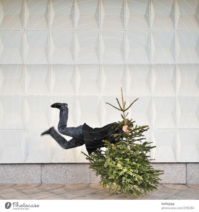 knut schlussverkauf Mensch Natur Weihnachten & Advent Baum Winter Umwelt Wand Leben Mauer Feste & Feiern springen Zeichen Symbole & Metaphern Weihnachtsbaum