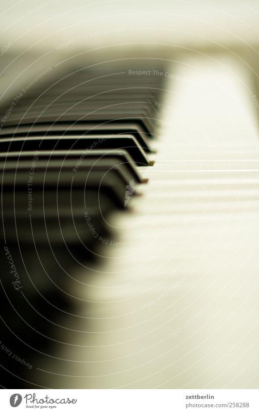Piano Freizeit & Hobby Spielen Häusliches Leben Wohnung Musik Kultur Konzert Keyboard gut wallroth Klavier Klaviatur Farbfoto Gedeckte Farben Innenaufnahme