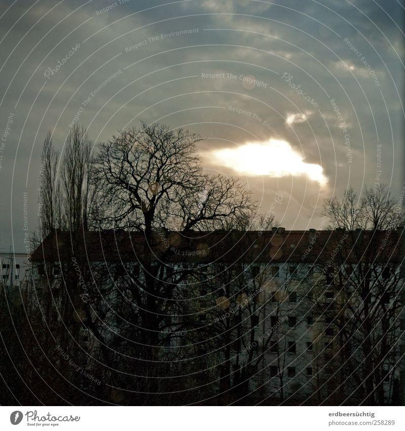 Aussicht ruhig Himmel Wolken Winter Baum Stadt Stadtzentrum Haus Gebäude Wohnhaus Reihenhaus Fenster Stein Beton leuchten kalt trist grau Stimmung Einsamkeit