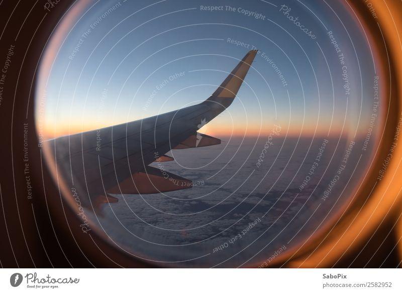 Flug in den Morgen Flugzeug fliegen Wärme Stimmung Warmherzigkeit Fernweh Abenteuer Farbe Horizont Ferien & Urlaub & Reisen Tragfläche Flugzeugfenster