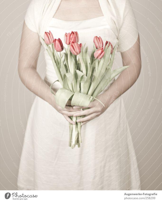 Soft tulips Mensch feminin Junge Frau Jugendliche Körper 1 18-30 Jahre Erwachsene Blume Tulpe Kleid stehen Wärme weich weiß Farbfoto Innenaufnahme
