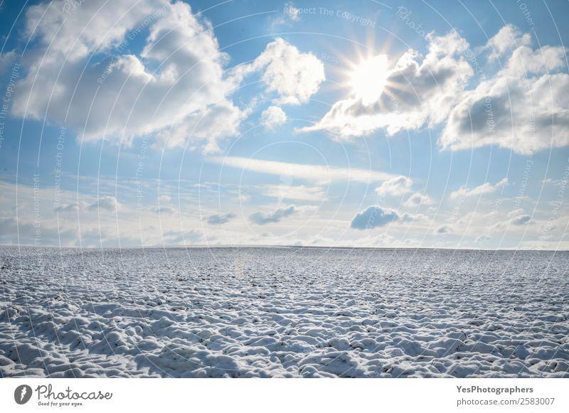 Natur weiß Landschaft ruhig Winter natürlich Wiese Schnee Deutschland hell Horizont Europa Schönes Wetter Jahreszeiten Unendlichkeit gefroren