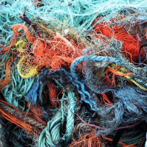 Netzwerk einrichten Müll Fischereiwirtschaft Rest Umweltverschmutzung Fischernetz