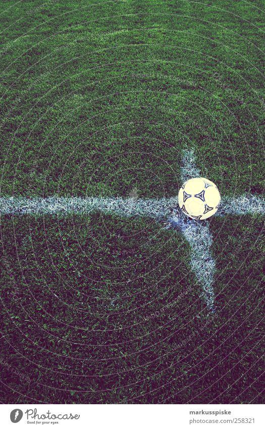 fussball anstoss zur WM 2014 Sport Gefühle Linie Fußball Erfolg Spielfeld Eckstoß Tor Publikum Sport-Training Fan Stadion verlieren Fußballplatz