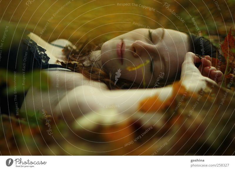 Blattgedrückt Mensch feminin Junge Frau Jugendliche Erwachsene 1 18-30 Jahre Natur Herbst Baum atmen Duft liegen ästhetisch schön Warmherzigkeit Gelassenheit
