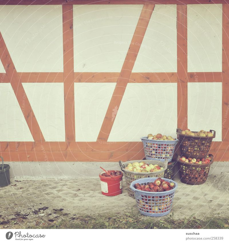 apfelpause in chamansülz Ernährung Wand Holz Lebensmittel Mauer Frucht Fassade Apfel Landwirtschaft Ernte Korb Eimer Fachwerkfassade