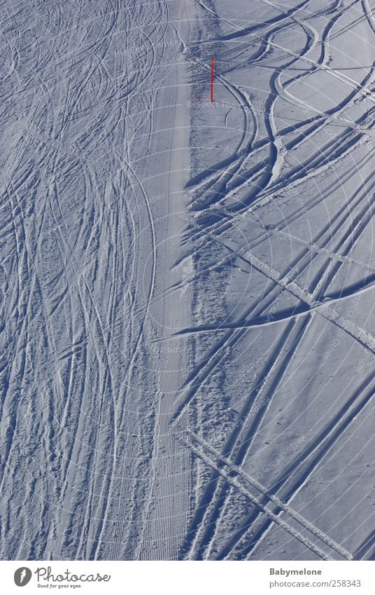 Spurwechsel Natur Ferien & Urlaub & Reisen weiß Landschaft Freude Winter Berge u. Gebirge Schnee Sport Zufriedenheit Tourismus Coolness fahren Skifahren Spuren