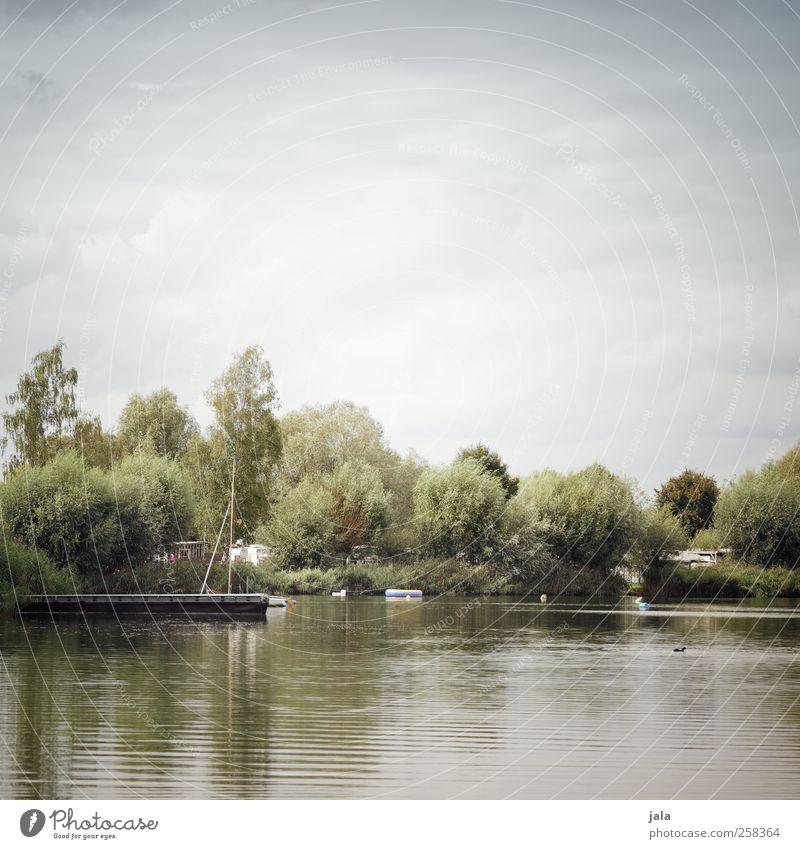 see Umwelt Natur Landschaft Pflanze Himmel Wolken Sommer Herbst Baum Sträucher Grünpflanze Wildpflanze See Ruderboot natürlich blau grau grün Steg Farbfoto