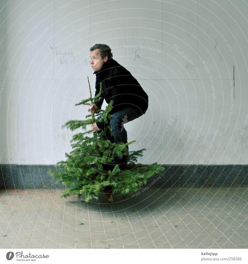 baumtanz Mensch maskulin Mann Erwachsene 1 Umwelt Natur Pflanze Baum springen Tanne Weihnachtsbaum Weihnachten & Advent knut Bewegung Gleichgewicht stehen