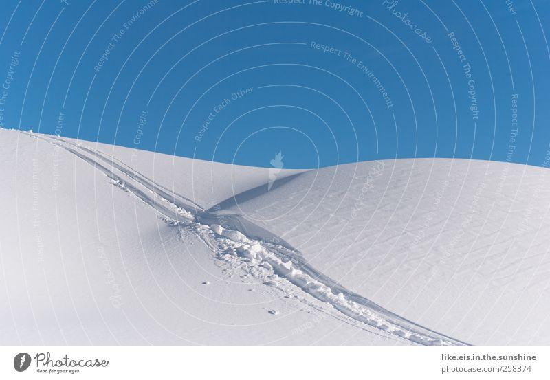 skifahrer-glück Natur Ferien & Urlaub & Reisen Landschaft Winter Schnee Sport Tourismus Eis Freizeit & Hobby Ausflug Schönes Wetter Abenteuer Hügel Frost
