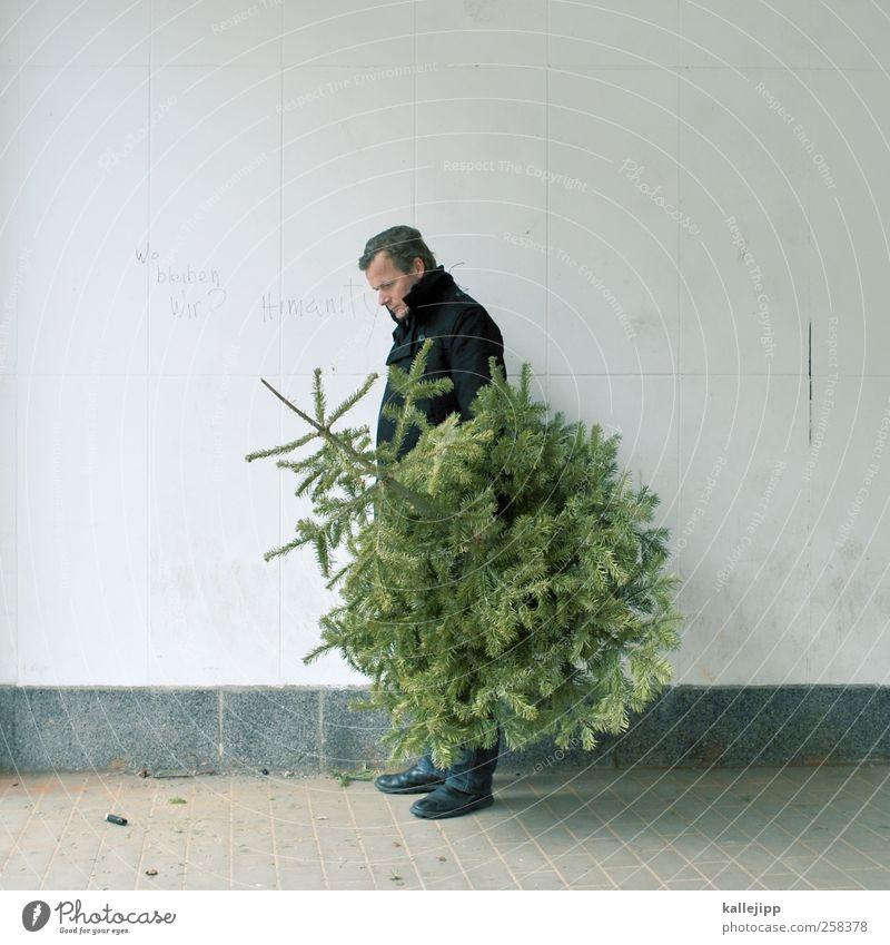 bye bye knut Mensch Mann Weihnachten & Advent Natur Baum Pflanze Erwachsene Umwelt maskulin stehen Weihnachtsbaum Tanne Abschied 30-45 Jahre Nadelbaum
