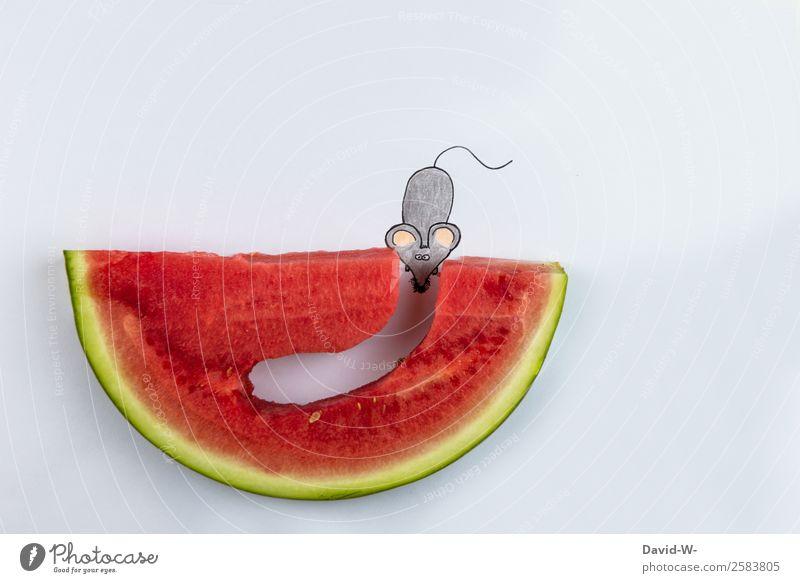 Tunnelblick Lebensmittel Frucht Ernährung Essen elegant Stil Gesundheitswesen Zufriedenheit Körper Kunst Umwelt Tier Maus 1 Denken Zeichnung selbstgemacht