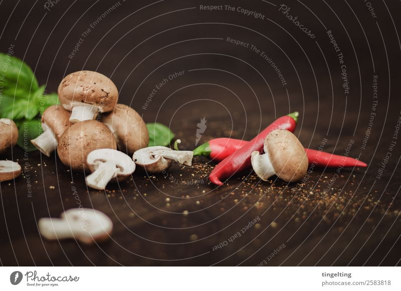 Champignons Lebensmittel Gemüse Kräuter & Gewürze Ernährung Essen Mittagessen Büffet Brunch Geschäftsessen Bioprodukte Vegetarische Ernährung Diät Natur frisch