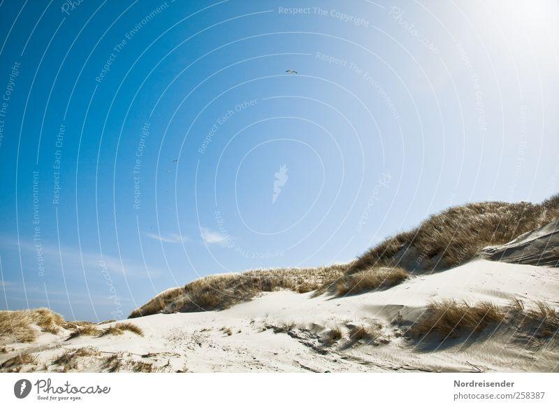 Spiekeroog | Licht harmonisch Sinnesorgane Erholung ruhig Sommer Sommerurlaub Sonne Strand Landschaft Sand Himmel Schönes Wetter Wärme Gras Nordsee Meer Fernweh
