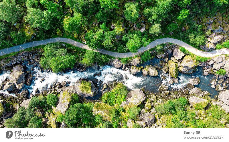 Nature Umwelt Landschaft Pflanze Tier Erde Wasser Sonne Sommer Schönes Wetter Baum Gras Park Wiese Wald Gipfel Gletscher Flussufer Wasserfall entdecken gehen