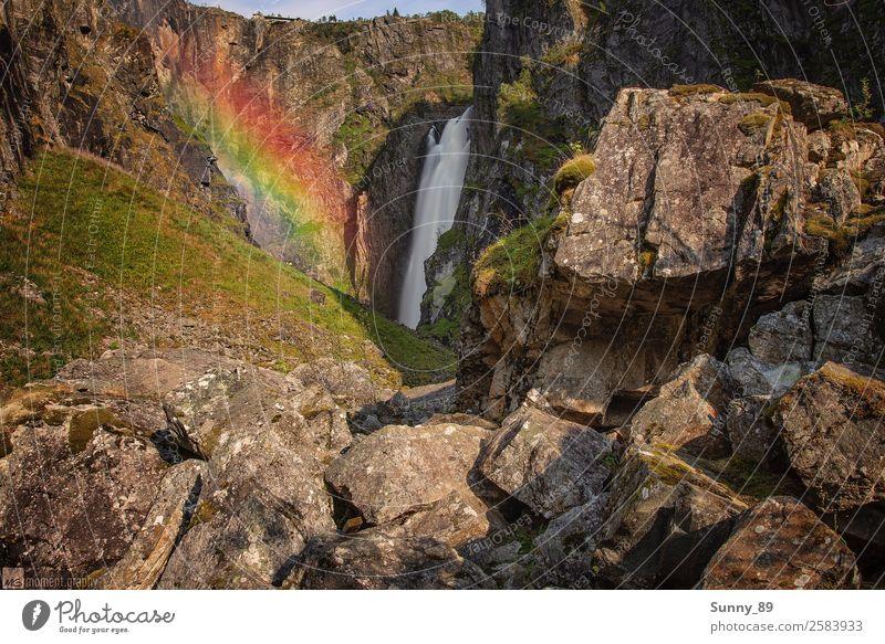 Rainbow Umwelt Natur Landschaft Pflanze Tier Erde Luft Wasser Himmel Sonne Sonnenaufgang Sonnenuntergang Sonnenlicht Sommer Schönes Wetter Gras Sträucher Moos