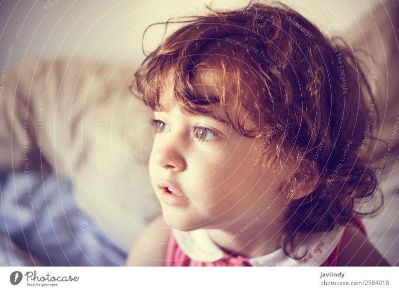 Liebenswertes kleines Mädchen mit lockigem Haar, das zu Hause zerzaust ist. Lifestyle Freude Glück schön Gesicht Kind Mensch Frau Erwachsene Kindheit 1