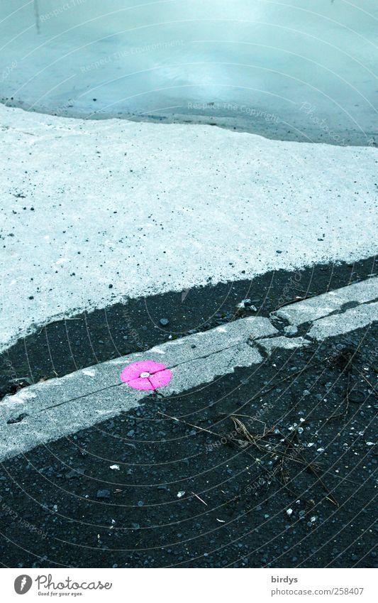 pinkpoint Wege & Pfade Bordsteinkante Beton Wasser Zeichen Schilder & Markierungen leuchten rosa ästhetisch Stadt Punkt 1 Begrenzung 3 Vermessungspunkt