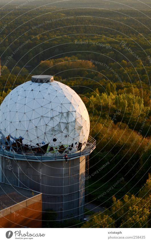 Relikt Wald Erholung Freiheit Architektur Turm lesen verfallen entdecken Verfall Ruine Radarstation Observatorium