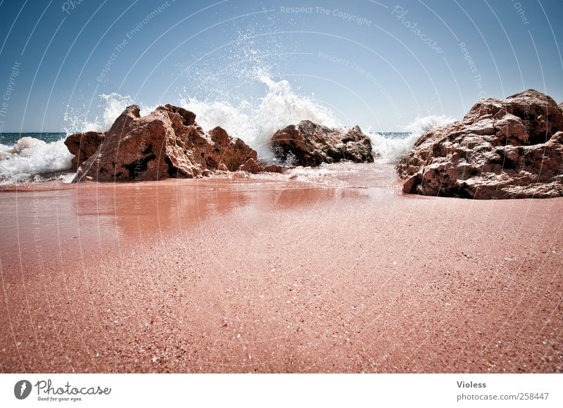 splash again Natur Sand Wasser Himmel Sonne Sonnenlicht Sommer Schönes Wetter Wellen Küste Strand Meer Erholung Ferien & Urlaub & Reisen Freude Urlaubsstimmung