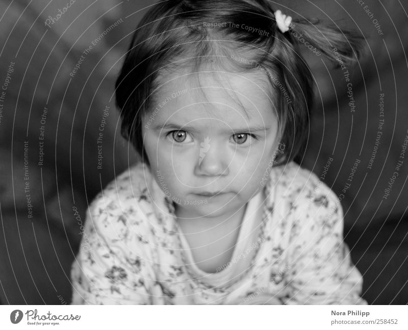 facing the world Mensch Kind Mädchen Gesicht Auge Kopf Haare & Frisuren Denken träumen Kindheit T-Shirt Bildung Neugier Vertrauen Kleinkind Gelassenheit