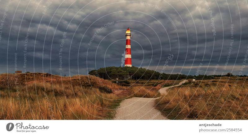 Leuchturm Ameland Landschaft Gewitterwolken Küste Nordsee Insel gigantisch maritim Ferne Außenaufnahme Weitwinkel