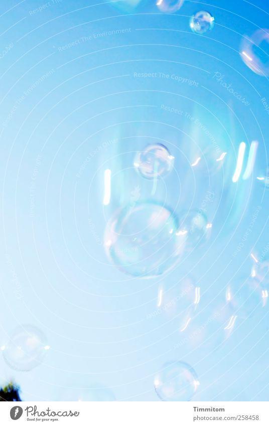 [CHAMANSÜLZ 2011] - Up, up and away - Phase 2 Himmel blau Baum Freude Herbst Spielen Gefühle Freizeit & Hobby frisch Fröhlichkeit verrückt Coolness leicht