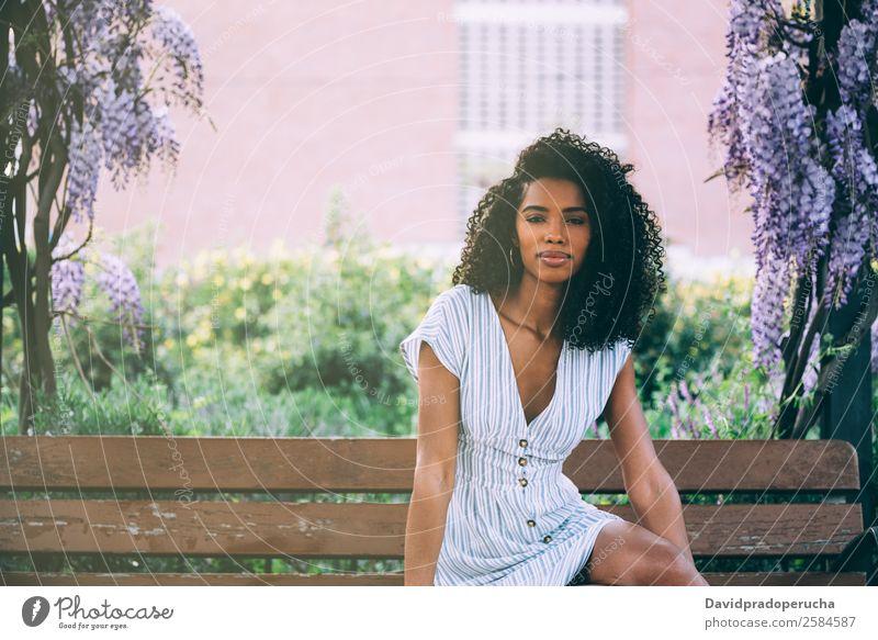 Fröhliche junge schwarze Frau, die von Blumen umgeben sitzt. Lifestyle Glück schön Erholung Sommer Garten Dekoration & Verzierung Erwachsene Natur Baum Blüte