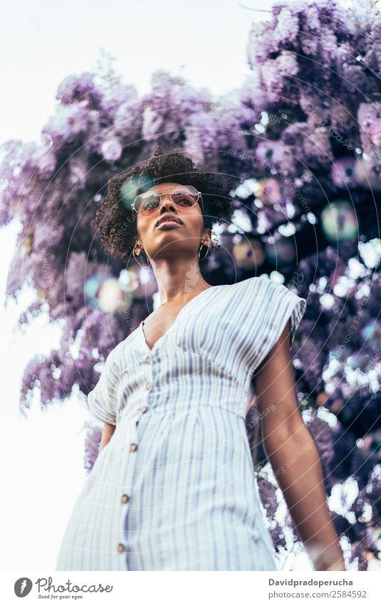 Fröhliche junge schwarze Frau, umgeben von Blumen. Lifestyle Glück schön Erholung Sommer Garten Mensch feminin Erwachsene Natur Baum Blüte Kleid Sonnenbrille