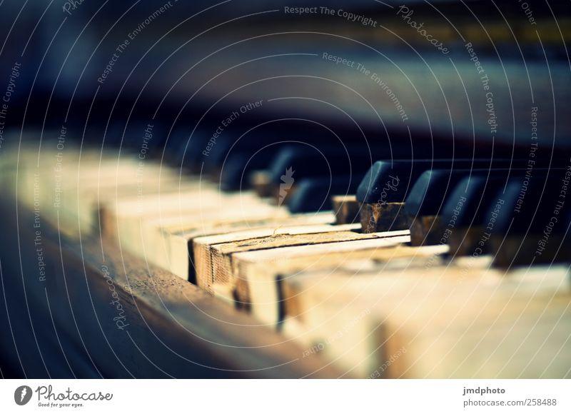 hau in die Tasten Freizeit & Hobby Häusliches Leben Wohnung Entertainment Musik Bar Cocktailbar Konzert Klavier alt elegant Zufriedenheit Lebensfreude