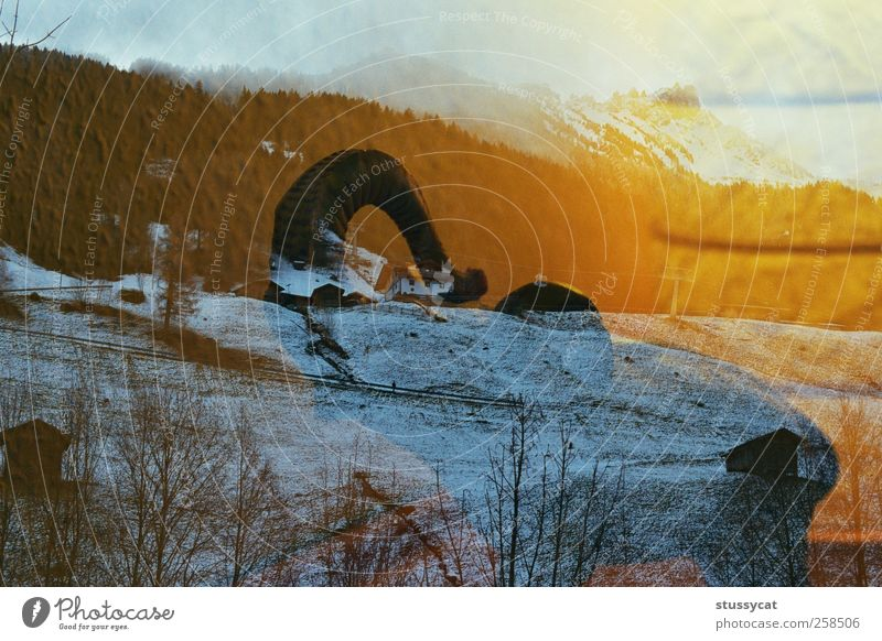 überlagert Jagd Sonne Winter Schnee Berge u. Gebirge Zoo Natur Pflanze Tier Erde Hügel Fährte Abenteuer Elefant mehrfarbig Außenaufnahme Morgen Tag Licht