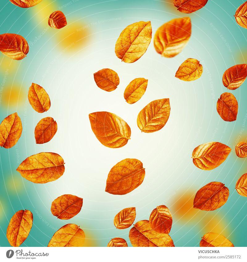 Fligende Herbstblätter auf türkis. Herbst HIntergrung Stil Design Erntedankfest Natur Blatt Ornament gelb Hintergrundbild Entwurf September