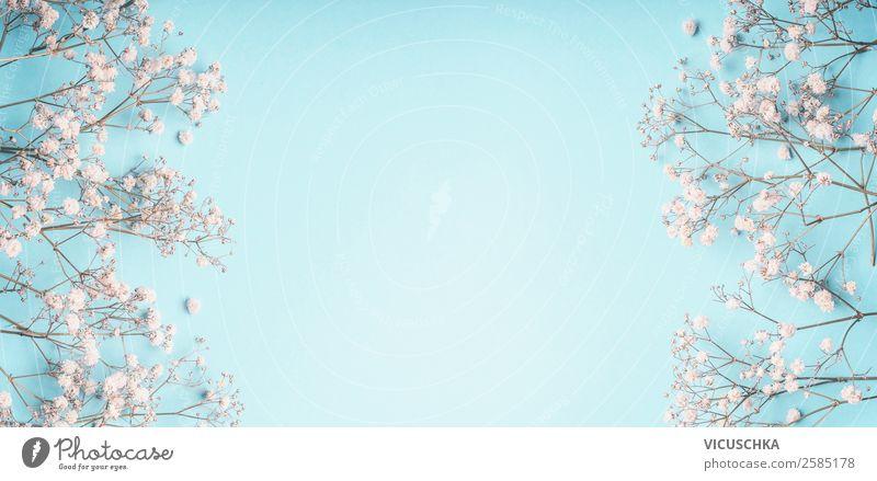 Hellblauer Hintergrund mit kleine weiße Blümchen elegant Stil Design Dekoration & Verzierung Feste & Feiern Muttertag Hochzeit Geburtstag Natur Pflanze Blume