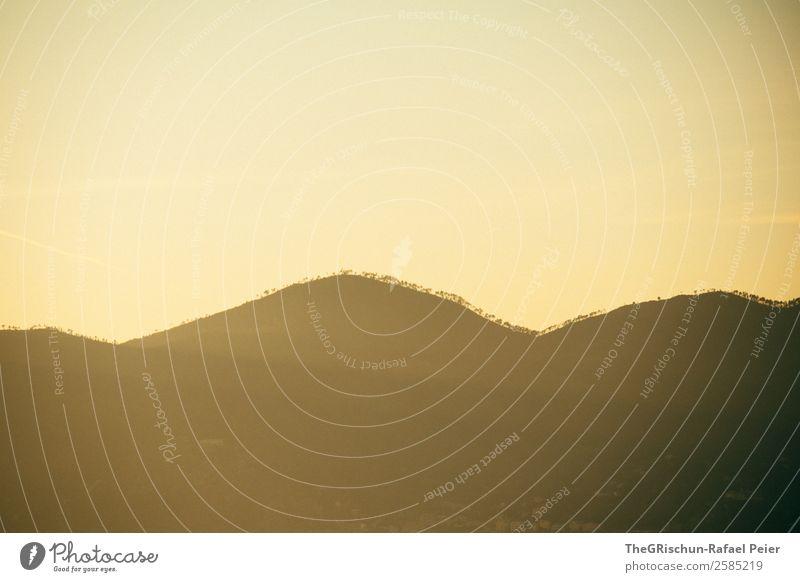 Hügel Natur Landschaft braun gelb gold Sonnenuntergang Cinque Terre Italien Baum Silhouette Wald Farbfoto Menschenleer Textfreiraum oben Textfreiraum unten