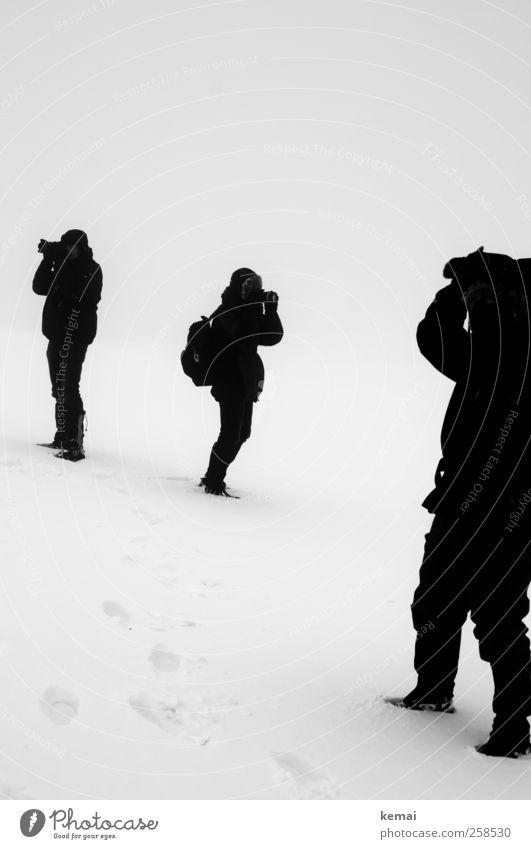 Baumloben   Buchen suchen Mensch Frau Mann weiß schwarz Erwachsene Umwelt kalt Leben Schnee Menschengruppe Beine Körper Eis Freizeit & Hobby Arme