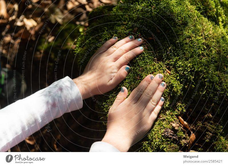 Waldspaziergang Sinnesorgane Erholung ruhig Meditation Kindergarten Kleinkind Kindheit Hand 1 Mensch 1-3 Jahre 3-8 Jahre Holz frisch Gesundheit grün Gefühle