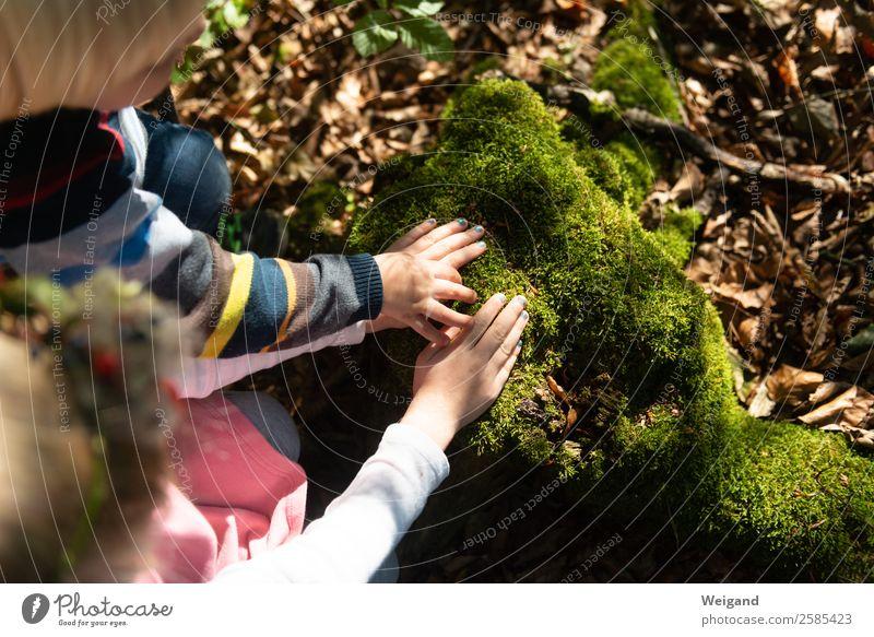 Walderfahrung Sinnesorgane ruhig Meditation Kindererziehung Kindergarten Kindheit 1-3 Jahre Kleinkind 3-8 Jahre Umwelt Natur Pflanze Tier Urelemente Erde Duft