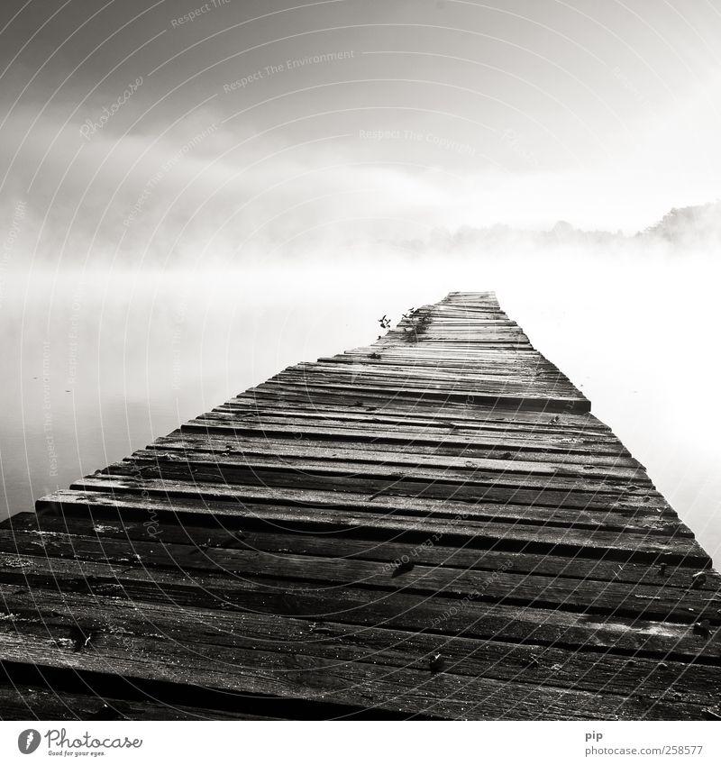 zeitraffer Wasser Einsamkeit ruhig Holz Luft See hell Horizont Zufriedenheit Nebel frisch Klima Idylle Schönes Wetter Steg Anlegestelle