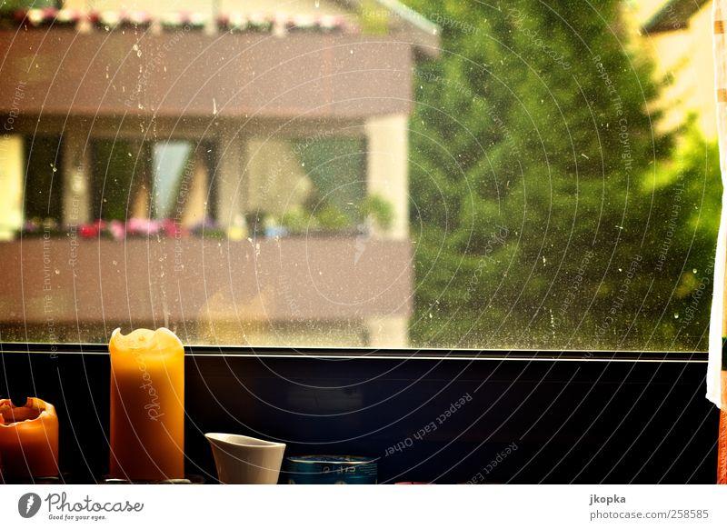looking out baum ein lizenzfreies stock foto von photocase. Black Bedroom Furniture Sets. Home Design Ideas