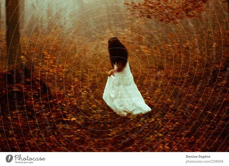 Herbstwald Frau Natur weiß schön Erwachsene Wald Liebe feminin Landschaft Bewegung Haare & Frisuren Glück träumen Wetter Körper