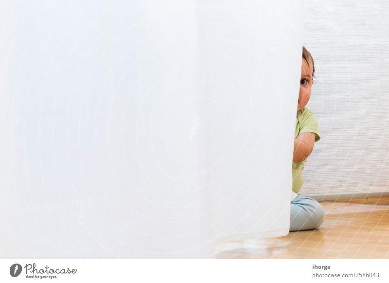 Baby spielt und versteckt sich mit weißen Vorhängen. Freude Glück schön Gesicht Spielen Kind Mensch Kleinkind Junge Kindheit 1 0-12 Monate krabbeln sitzen