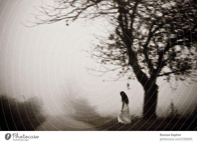 Nebel Jugendliche weiß schön Baum Einsamkeit ruhig Herbst feminin kalt Wiese Leben Landschaft Gefühle Freiheit Traurigkeit Denken