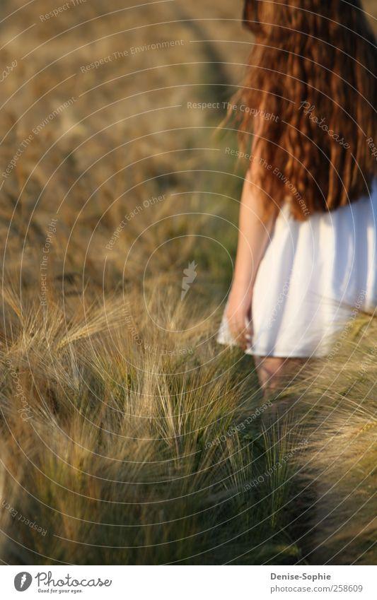 Sehnsucht Kind Jugendliche weiß schön Sonne Liebe Landschaft Bewegung Glück Feld gehen natürlich maskulin Fröhlichkeit außergewöhnlich süß