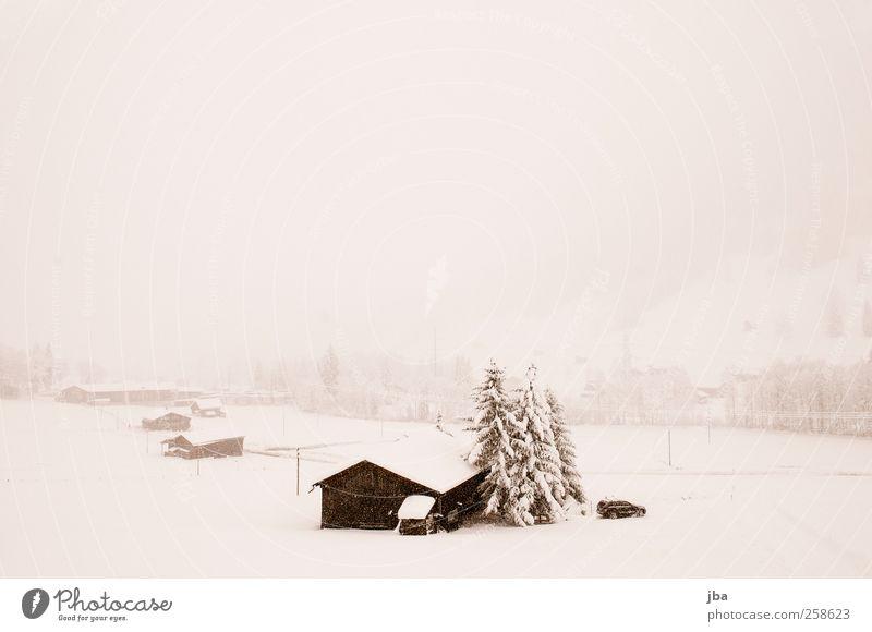 Schneetreiben Natur alt Wasser Landschaft ruhig Haus Winter Berge u. Gebirge Traurigkeit Schnee Schneefall Nebel Tür warten Schönes Wetter Urelemente