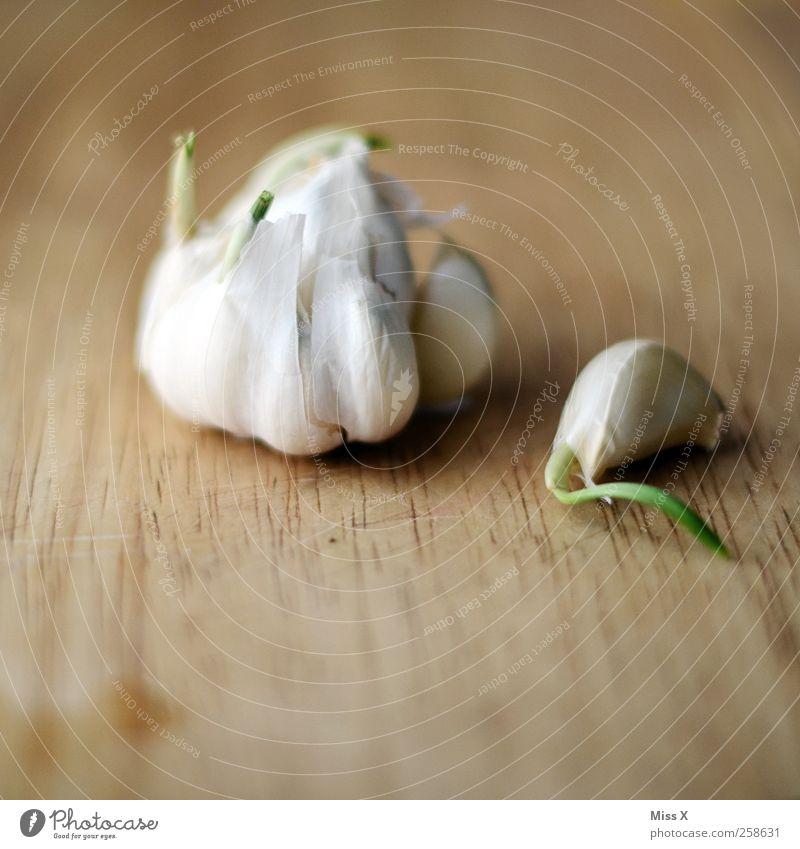 Alte Zehe Lebensmittel Gemüse Kräuter & Gewürze Ernährung Bioprodukte frisch Gesundheit lecker Knoblauch Übelriechend Holz Knoblauchzehe Wachstum Farbfoto