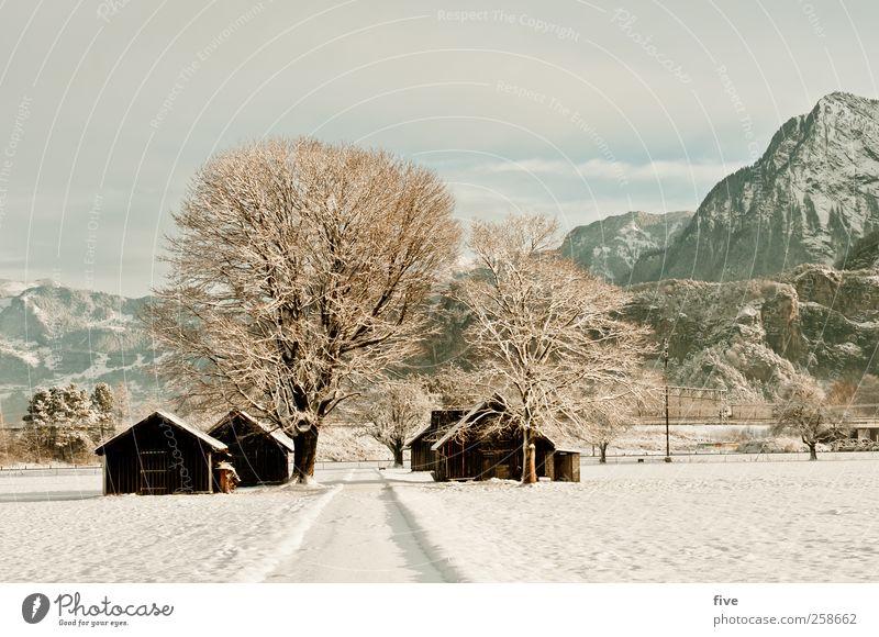 winterlandschaft Himmel Natur Baum Pflanze Winter Wolken Haus Wald Straße kalt Wiese Schnee Landschaft Berge u. Gebirge Wege & Pfade Eis