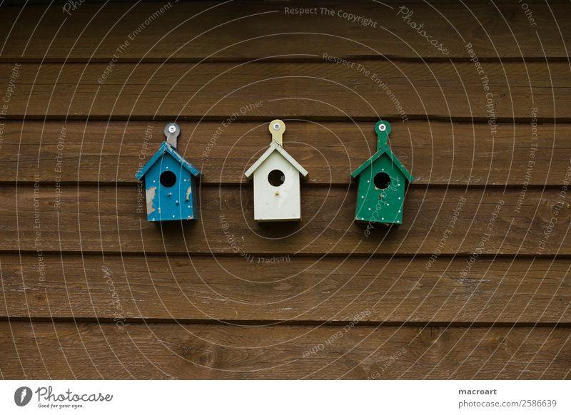 Vogelhäuschen vogelhaus vogelhäuschen dekoration wand holzwand holzlatten dunkel lackiert grün blau weiß einfamilienhaus immobilien reihenhaus reihenhäuser